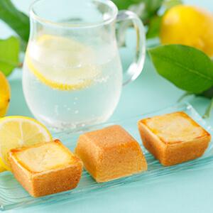 商品画像-資生堂パーラー-夏のチーズケーキレモン